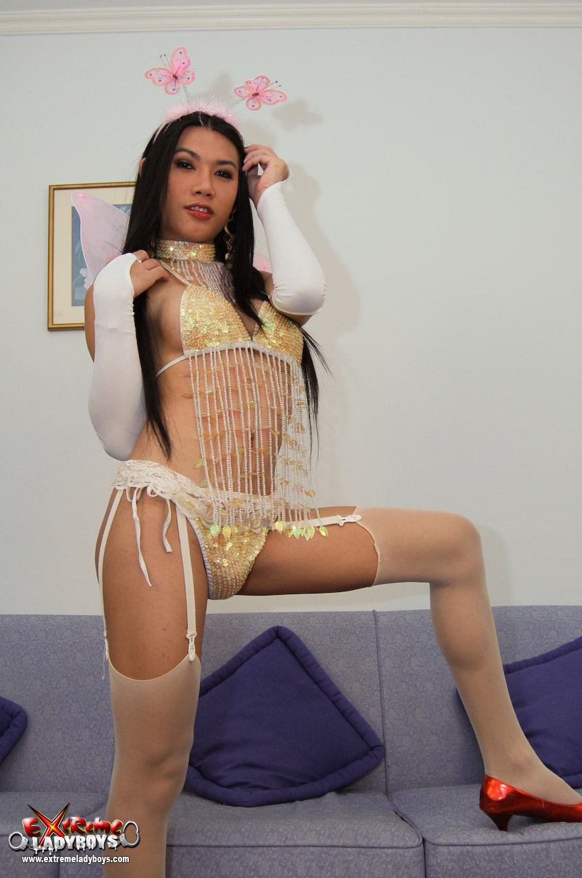 Shemale picture gallery tranny fairy