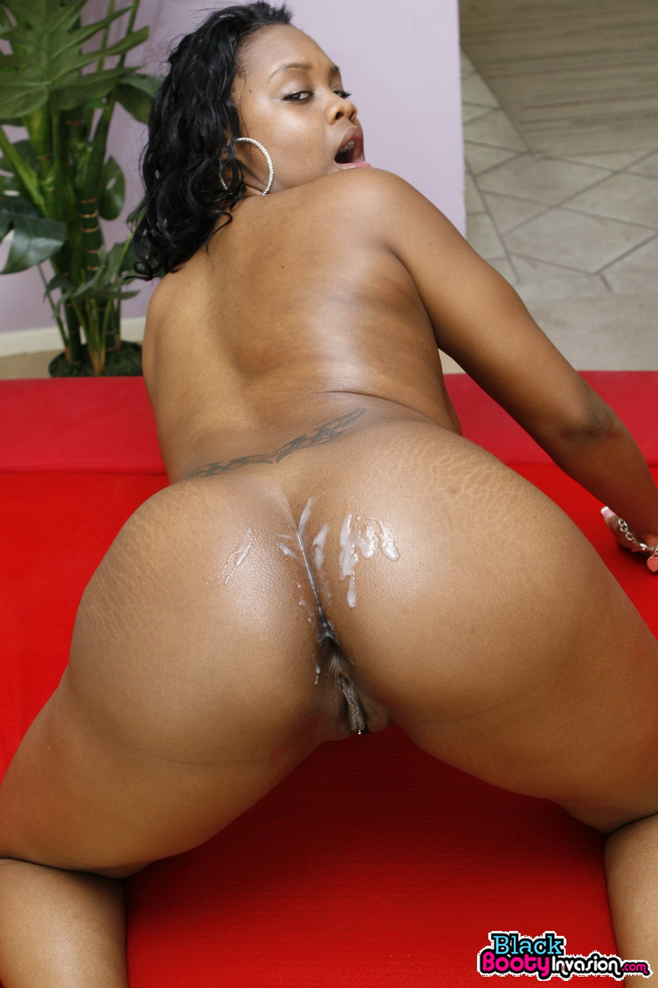 Big Ass Latina Black Dick