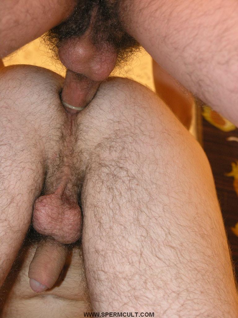 Gay Cult Porn