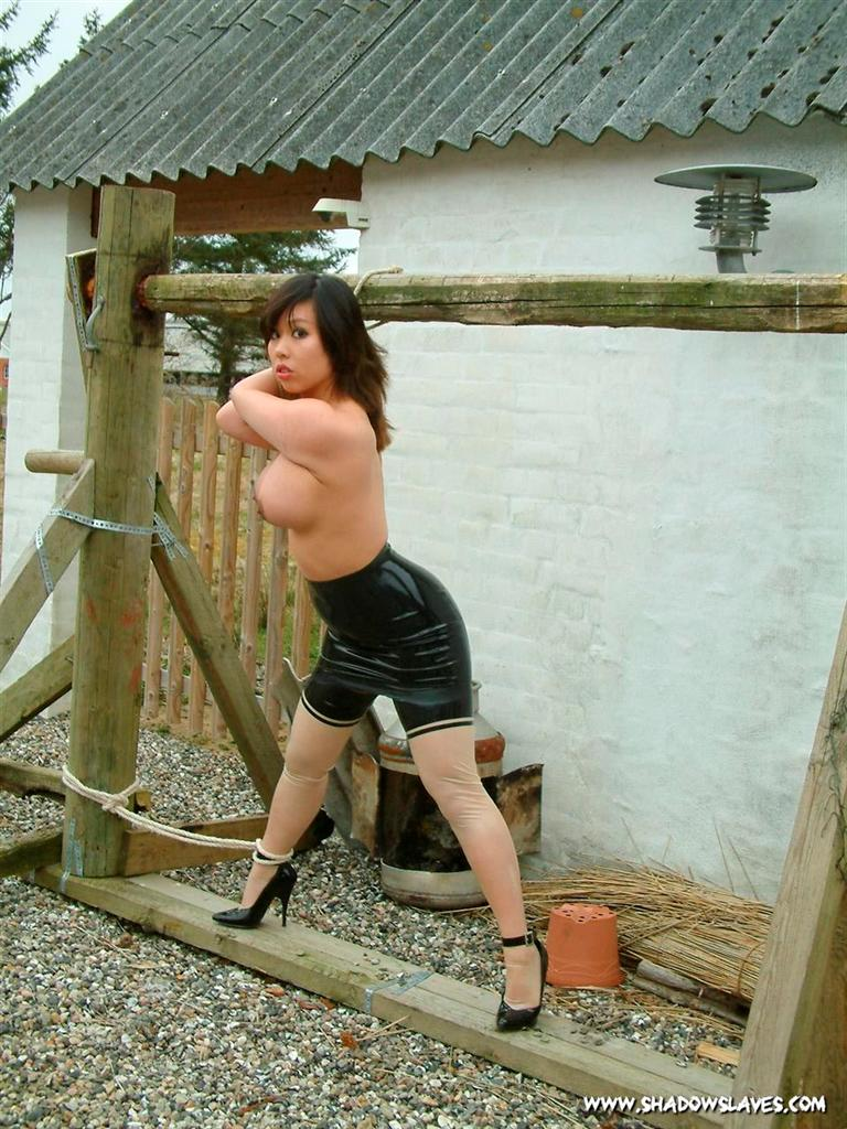 White bitch chained to a breeding bench and blackbred - 2 4
