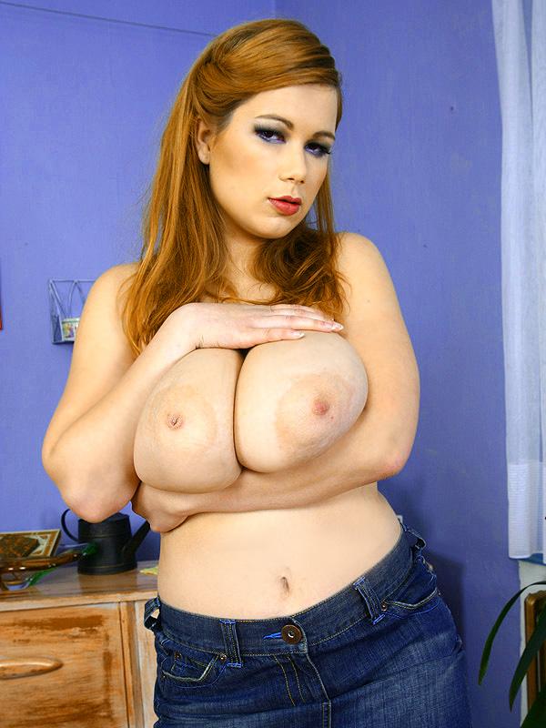 big tits curvy asses 14